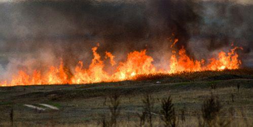 Jak co roku ARiMR ostrzega - Nie wypalaj traw! Gro¿± za to kary i cofniêcie dop³at!
