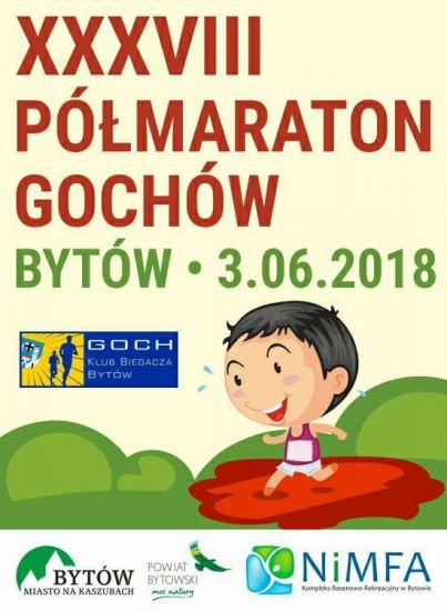 XXXVIII Pó³maraton Gochów
