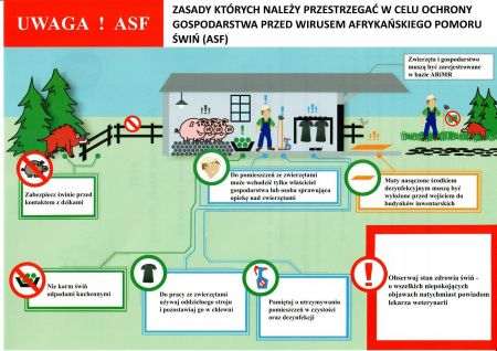Zasady ochrony przed ASF